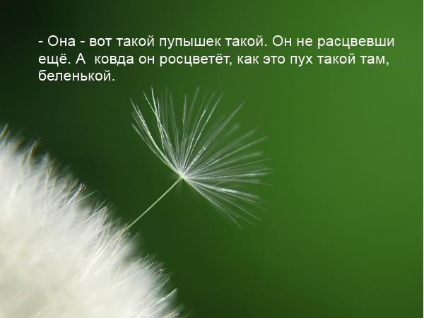 солнцеворот, славянские праздники