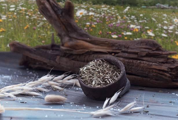 сбор трав для магии, магические травы, травяной сбор, травы для обрядов, купальские травы