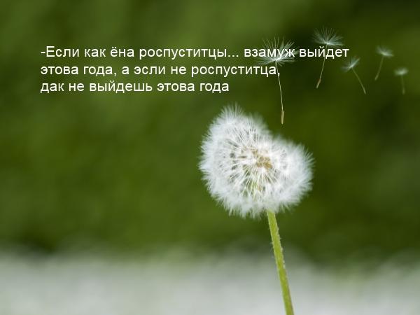 славянские праздники, солнцеворот,