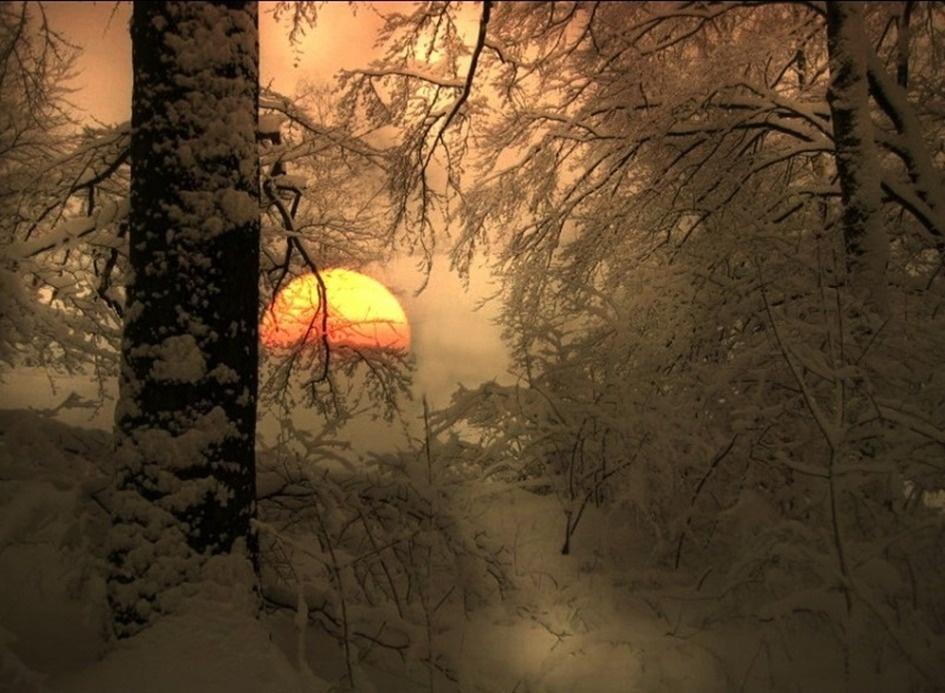 Картинки зимнее солнцестояние гифки
