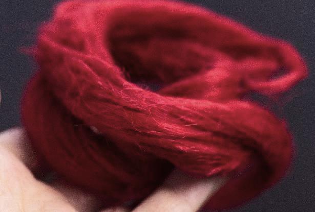 крапива кудель красная